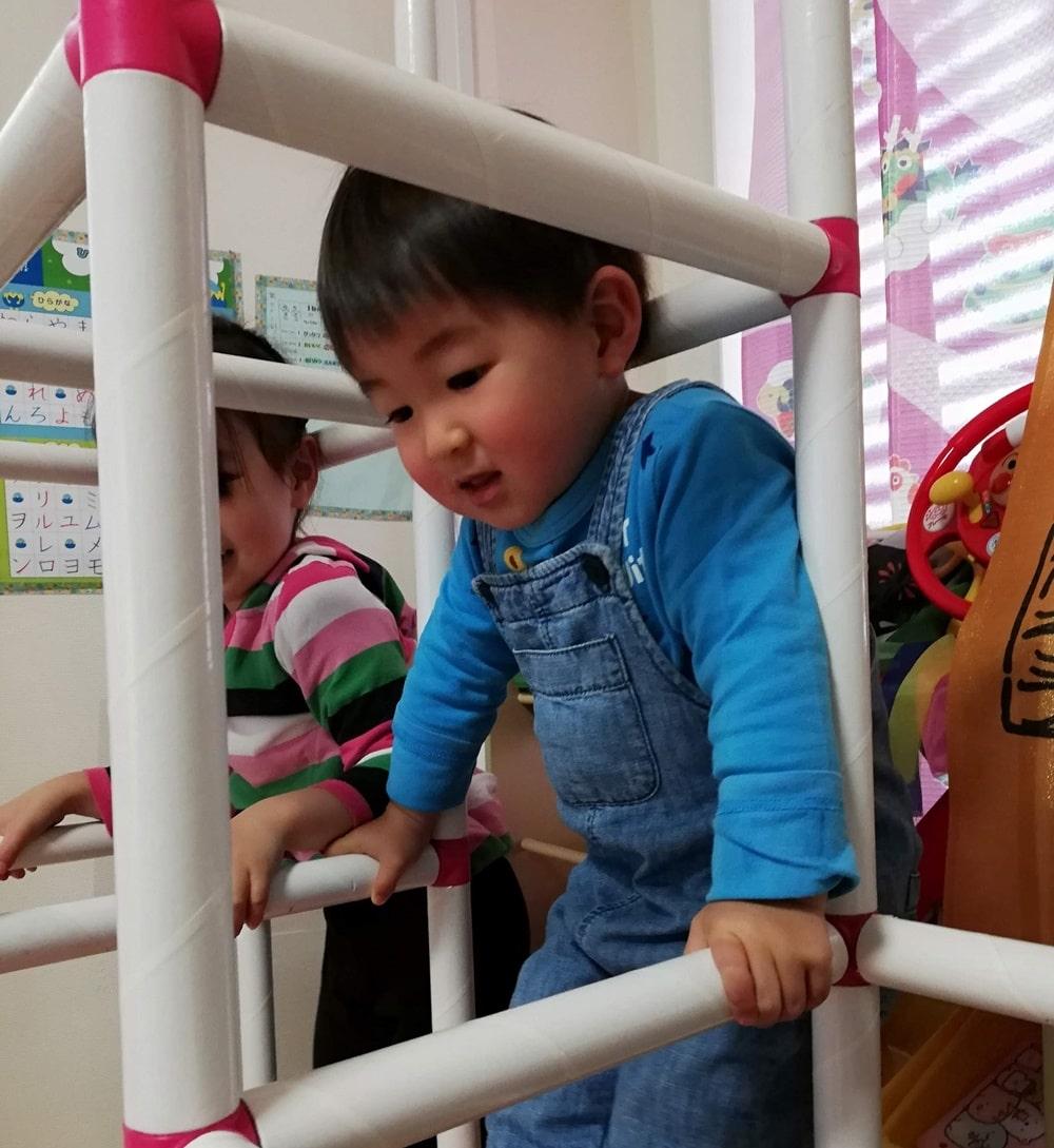 2歳ジャングルジム